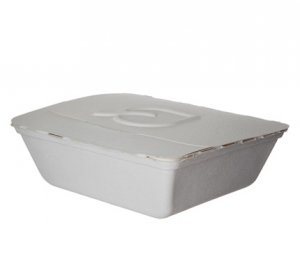 Folia™ (IV) Renewable & Compostable Take-Out Container, 8.25 x 7. 5 x 2.5""