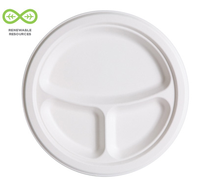10 inch 3-Compartment Plate
